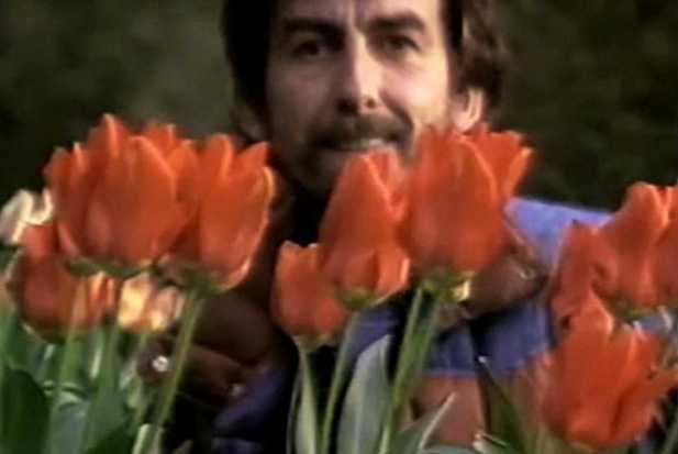 George Harrison and flowers