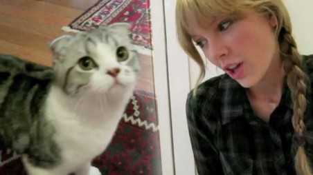 meredith-taylor-swift