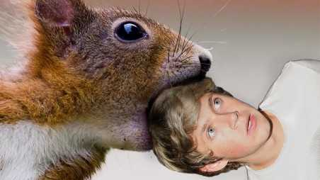 Niall Horan Squirrel Attack!