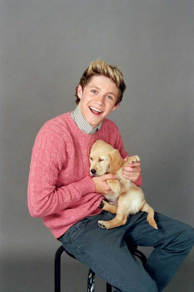 One Direction Wonderland Puppies