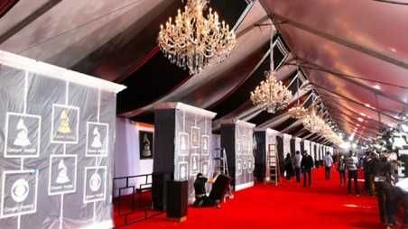 grammy awards red carpet photos 2014 Best Worst