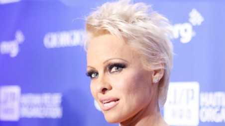 Pamela Anderson gang Rape molested cannes speech animal rights charity