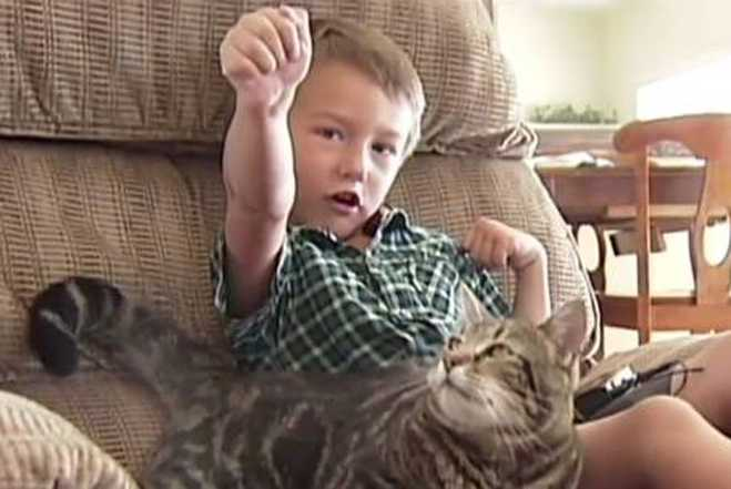 Tara The Cat Saves The Day—Rescues Boy From Dog Attack!