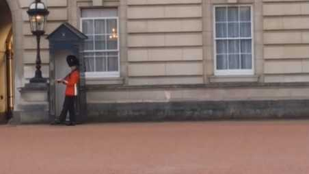 buckingham palace guard fe