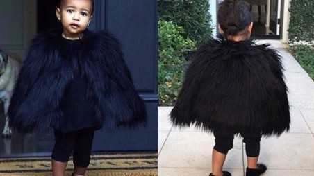 baby-northwest-fur