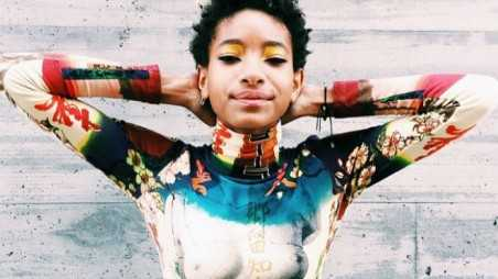 Willow Smith Posts Bizarre Topless Photo
