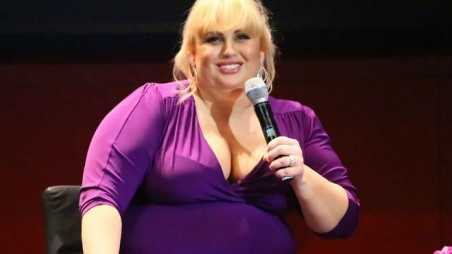Rebel Wilson Hollywood Friends Not Real