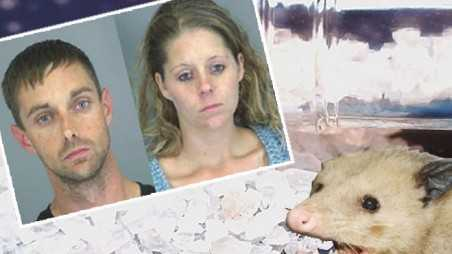 couple arrested after calling 911