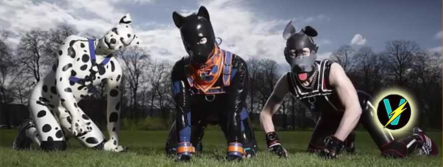 pup play BDSM Subculture f